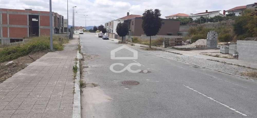 Vinhas Paredes De Coura terrain picture 146960