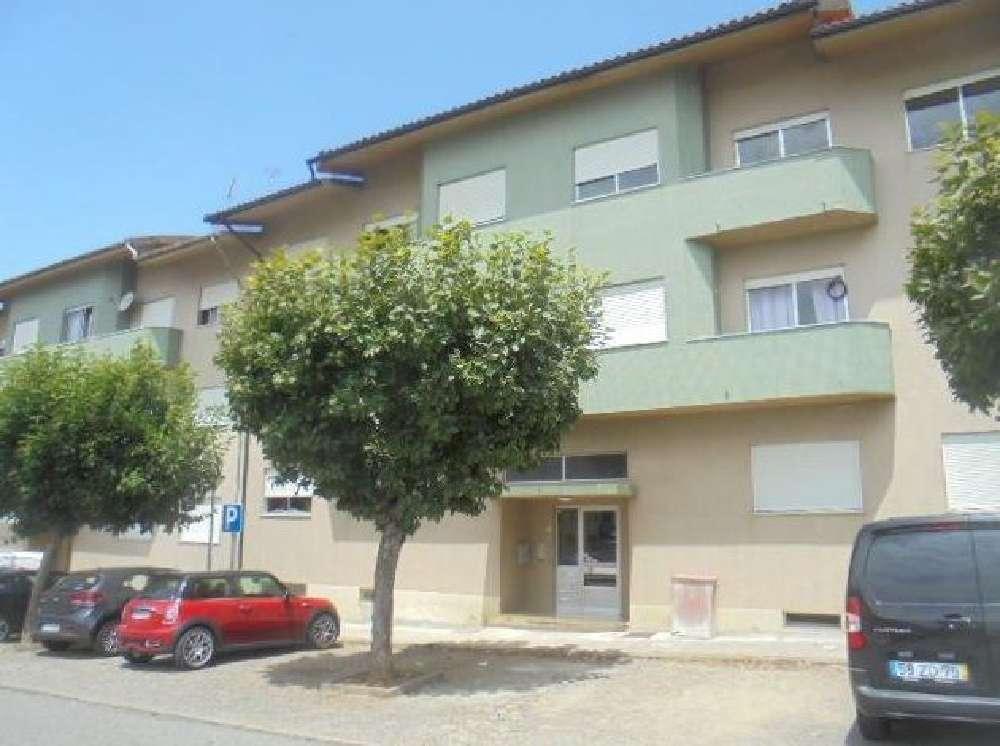 Albergaria-A-Velha Albergaria-A-Velha apartment picture 147569