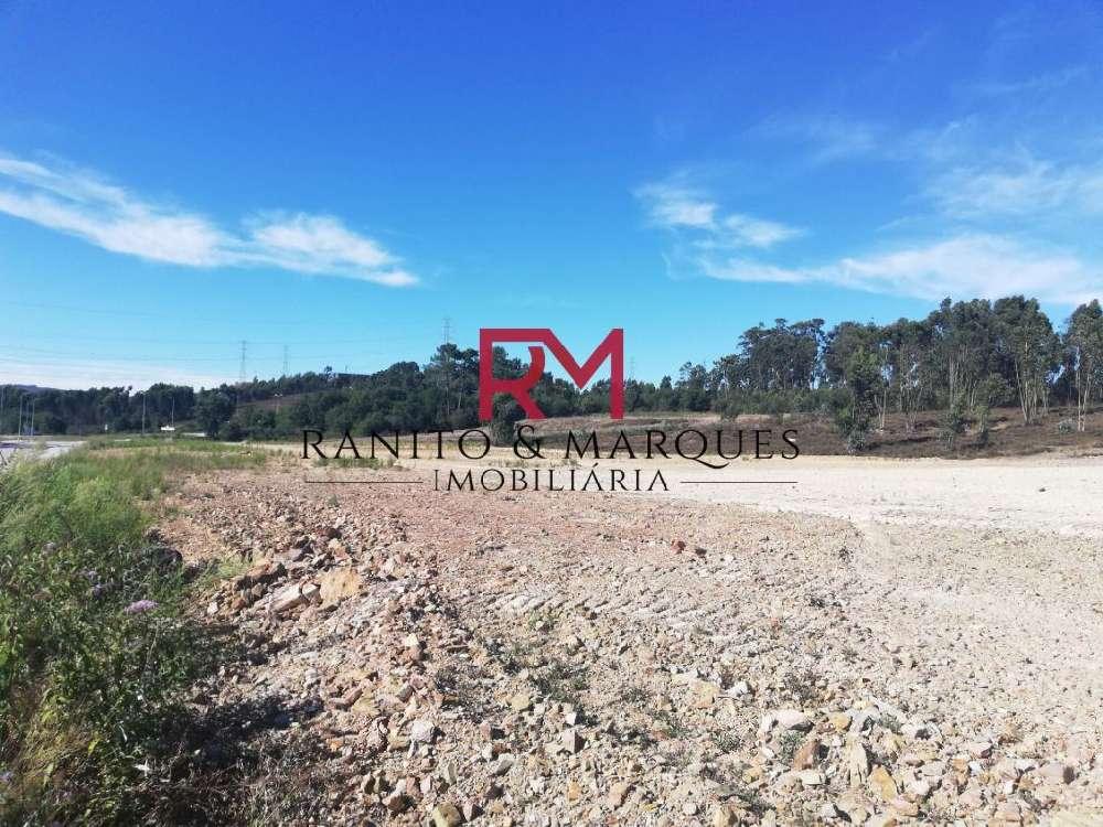 Campo Valongo terrain picture 147317