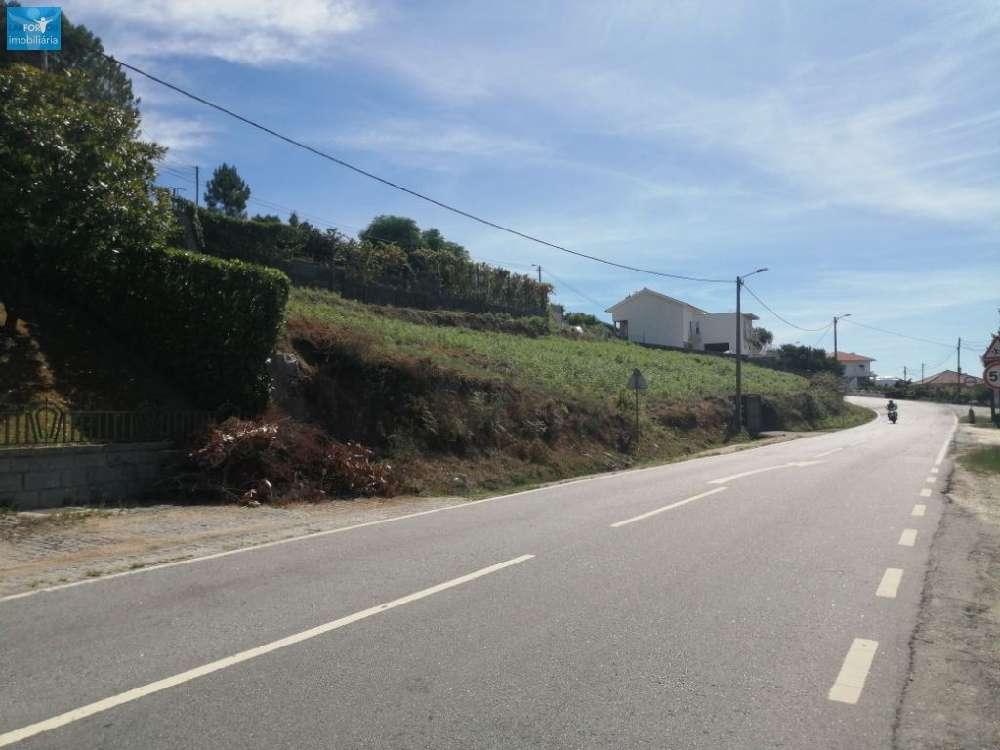 Oliveira Póvoa De Lanhoso terrain picture 146485