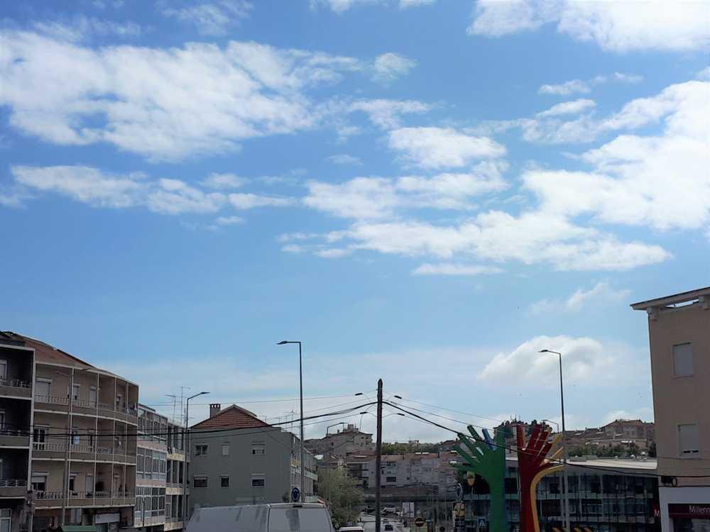Setúbal Setúbal apartment picture 145503