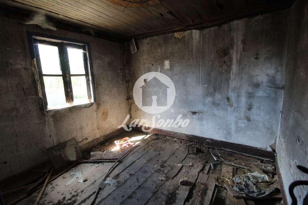 Feitos Barcelos house picture 147738