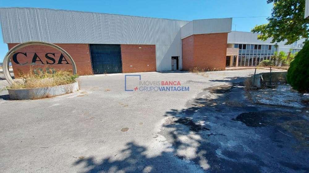 Vila Chã de Ourique Cartaxo house picture 145734