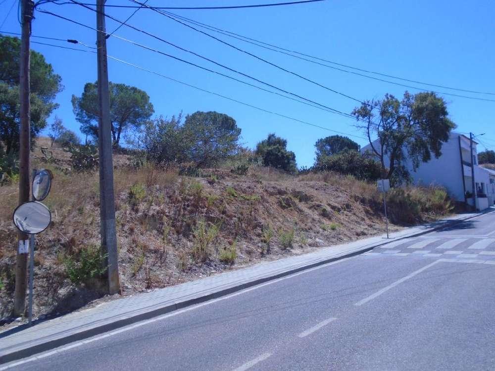 Coruche Coruche terrain photo 145781
