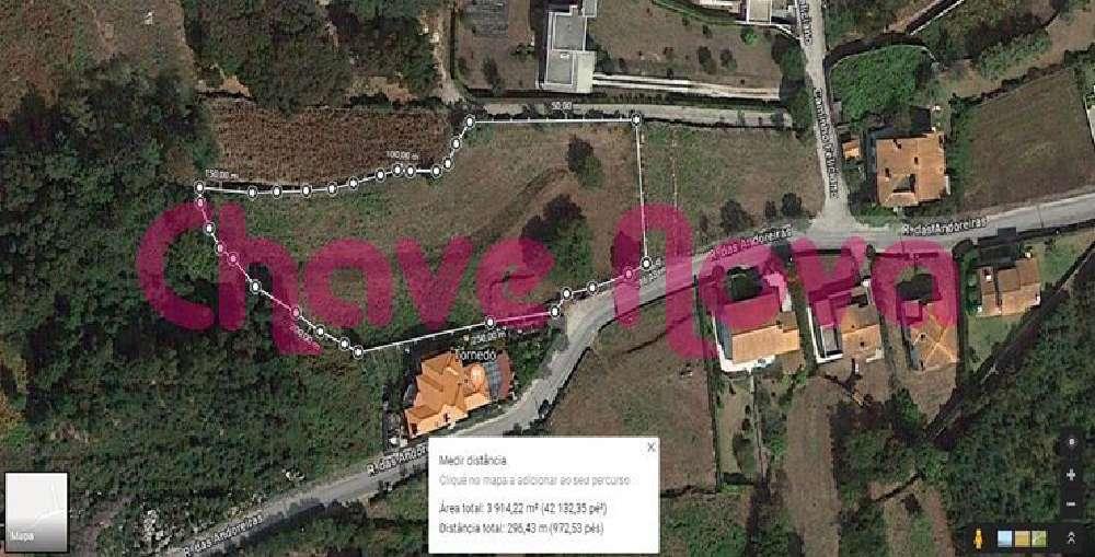 Moledo Caminha terrain picture 146726