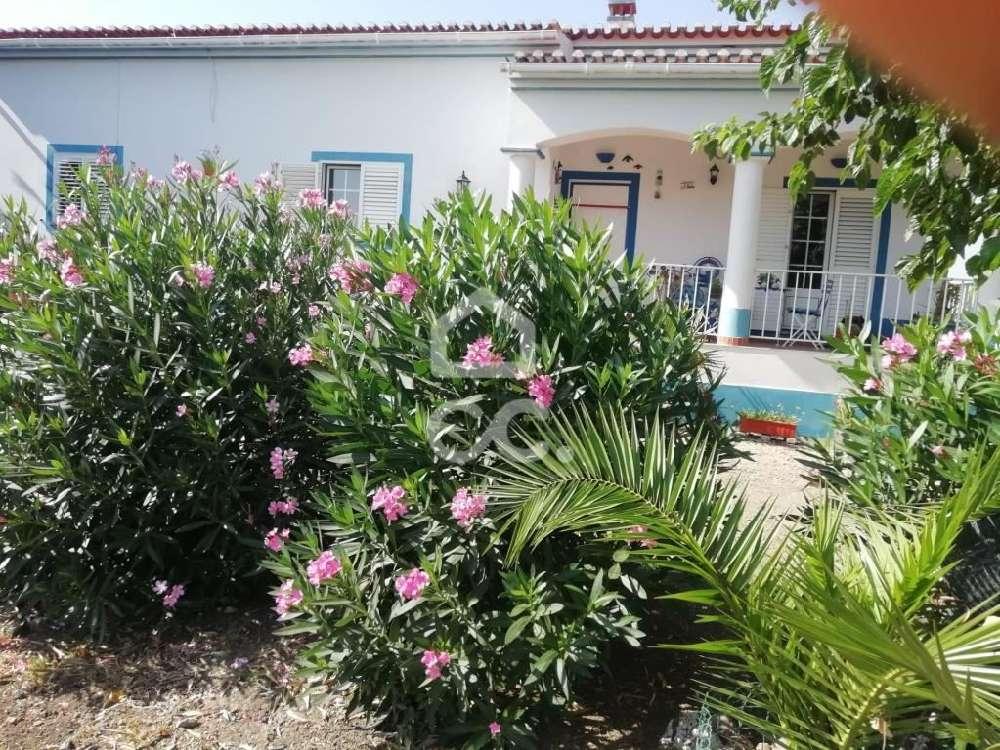 Beja Beja house picture 146881