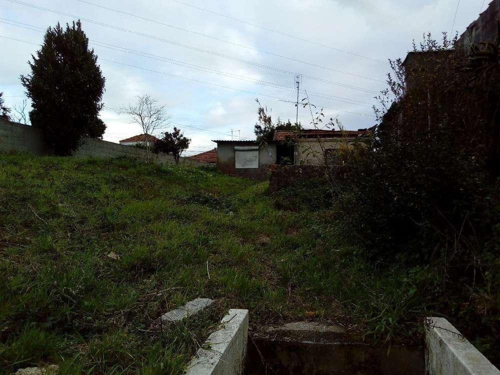 Oleiros Santa Maria Da Feira terrain picture 147957