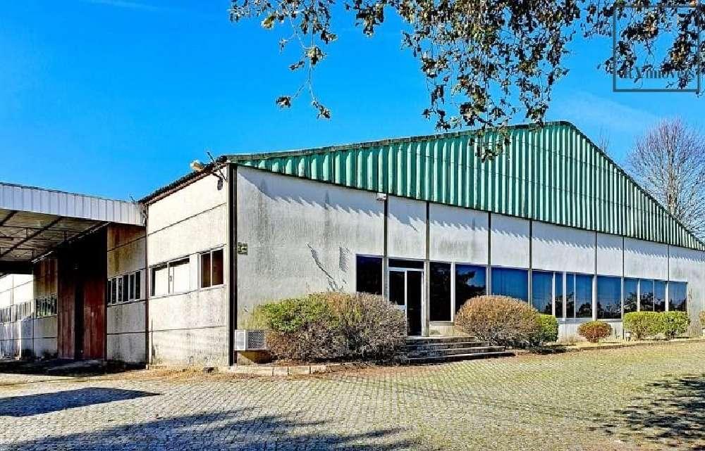 Viana do Castelo Viana Do Castelo 商业地产 照片 #request.properties.id#