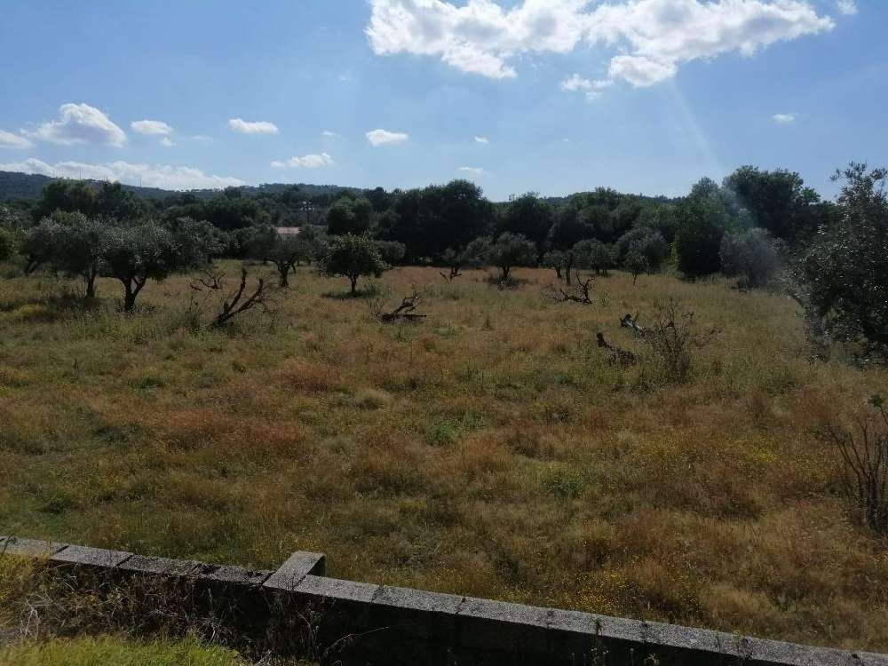 Carreiras Portalegre terrain photo 171388