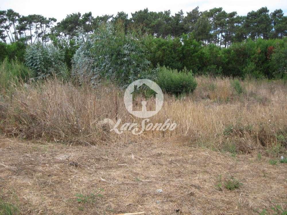 Almodôvar Almodôvar terrain picture 171001
