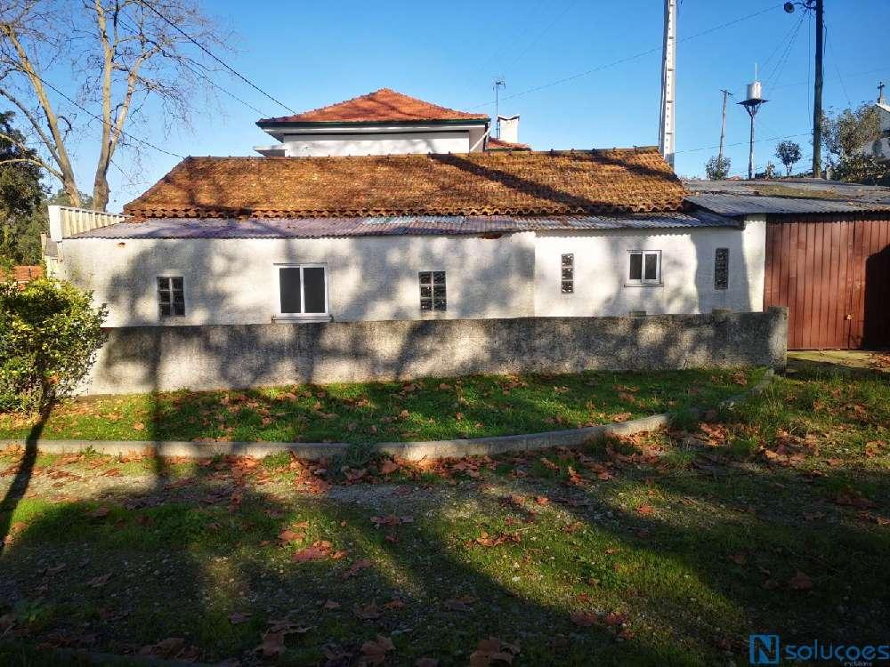 Estarreja Estarreja villa picture 186547