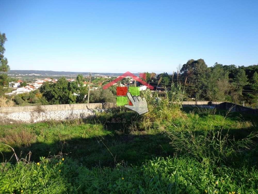 Constância Constância terrain picture 175493