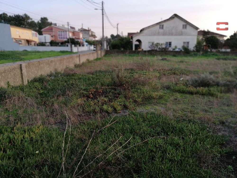 Quinta do Conde Sesimbra terrain photo 172113