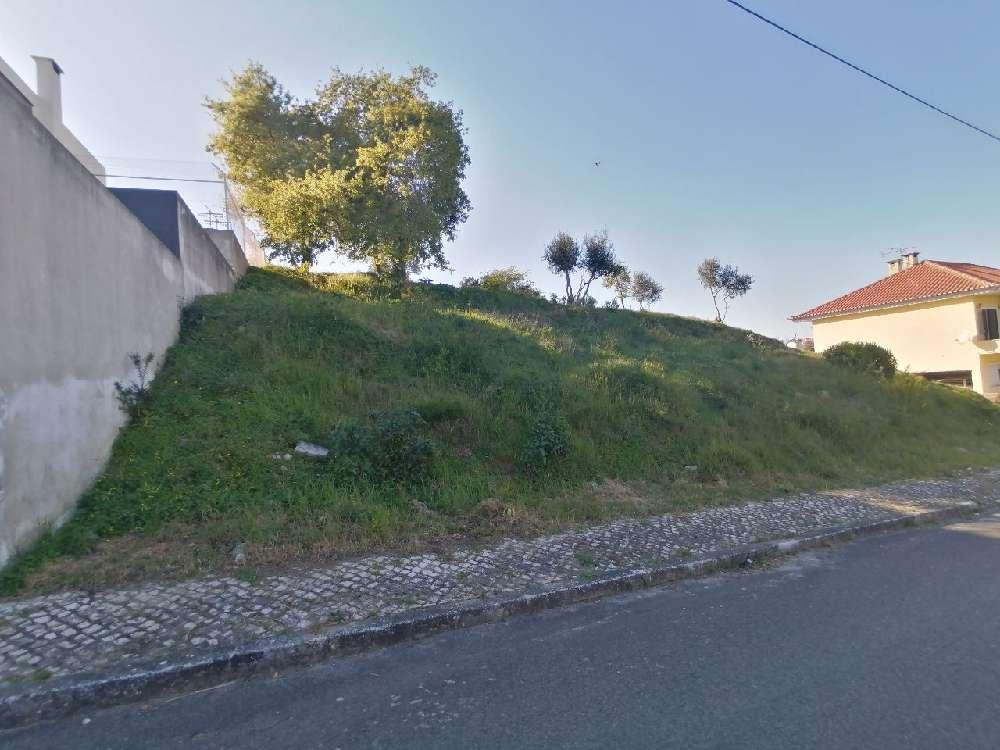Vila Franca de Xira Vila Franca De Xira terrain picture 171876