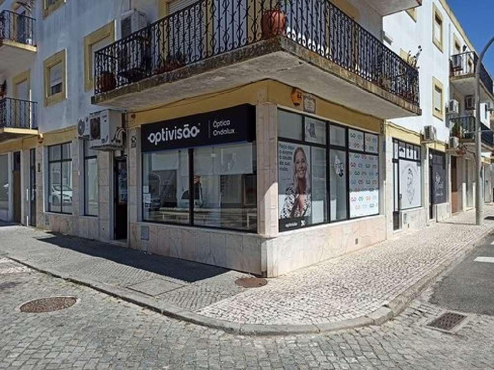 Gavião Gavião kommersiell photo 190168