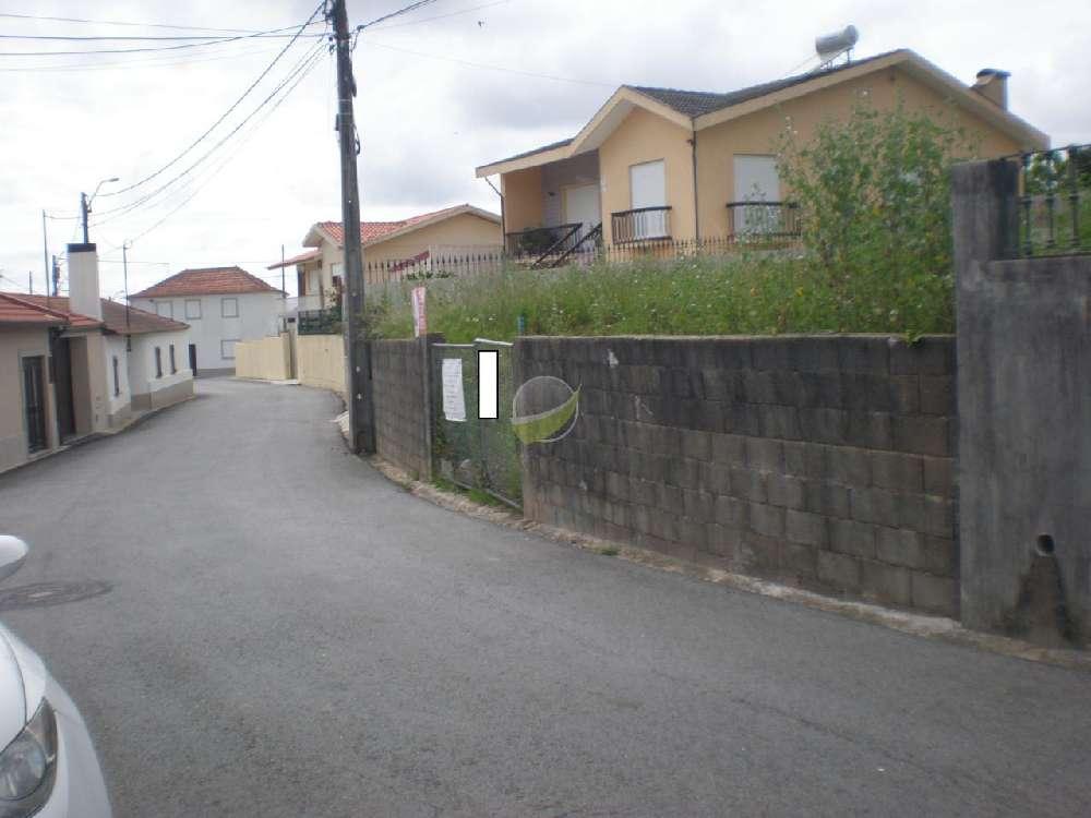 Monte da Cumeada Almodôvar terrain picture 171960