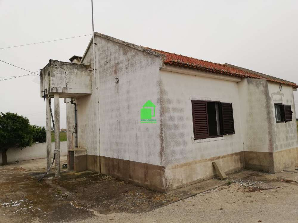 Palmela Palmela house picture 188801