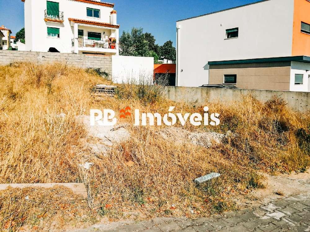 Vila Nova da Barquinha Vila Nova Da Barquinha hus photo 173156