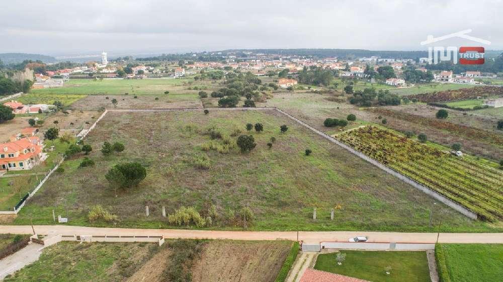Vale de Santarém Santarém terrain picture 172385