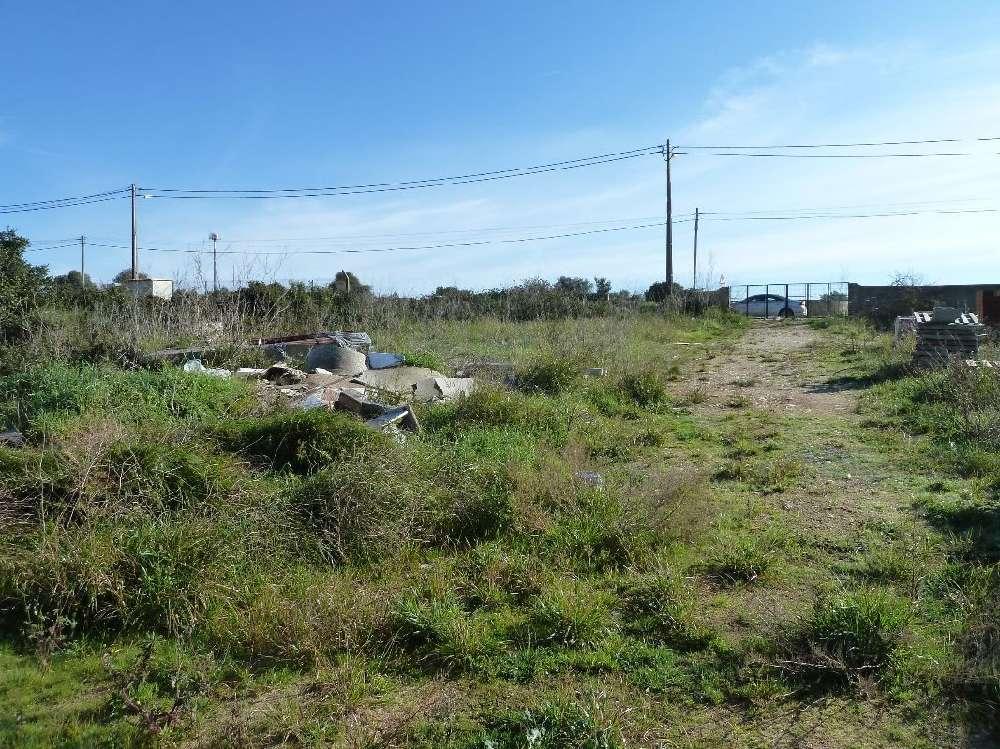 Sintra Sintra terrain picture 190070