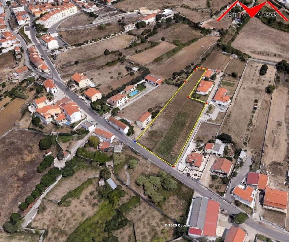 Sintra Sintra terrain picture 190075