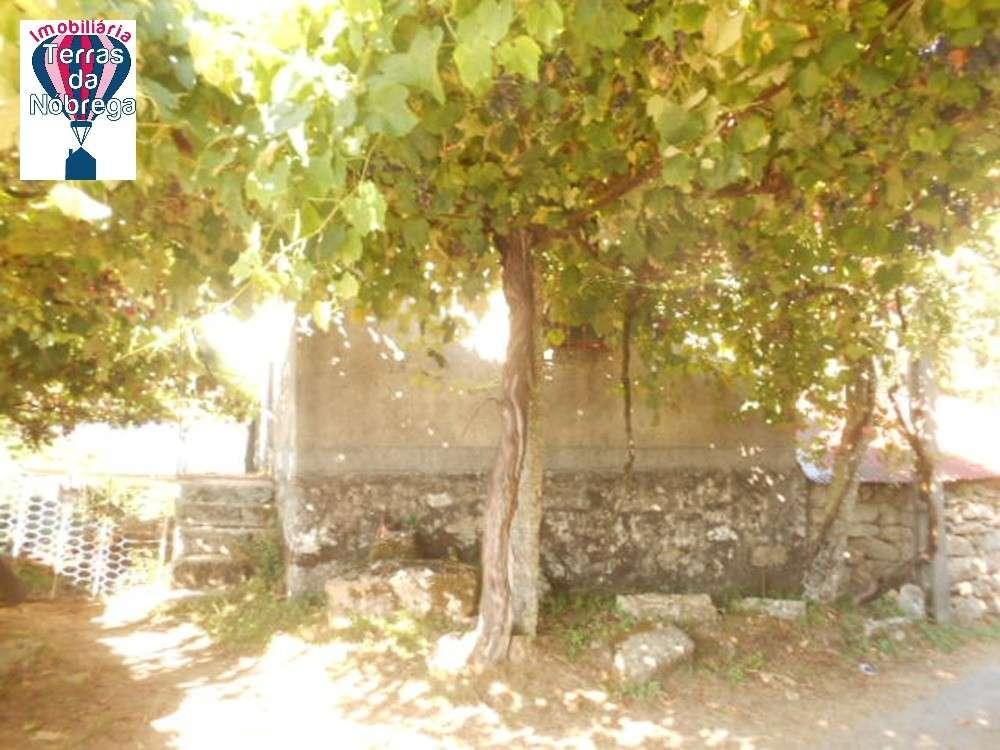 Arcos de Valdevez Arcos De Valdevez terrain picture 190444