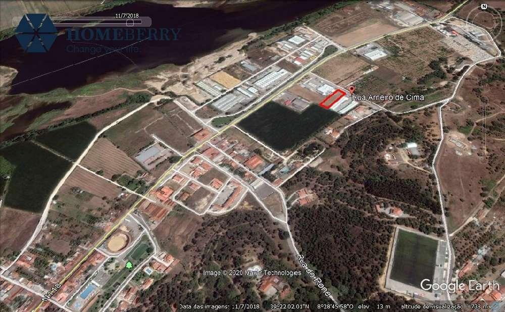 Chamusca Chamusca Grundstück Bild 180989