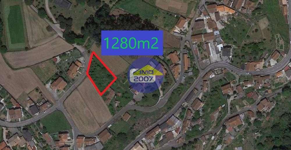 Ul Oliveira De Azeméis terrain picture 168605