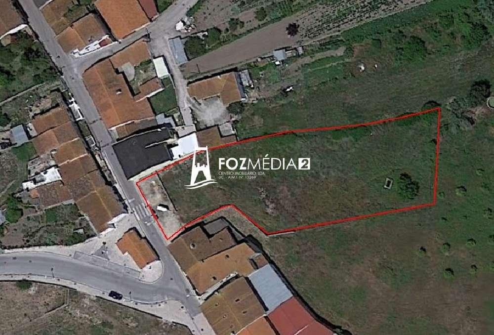 Montemor-o-Velho Montemor-O-Velho terrain picture 179774