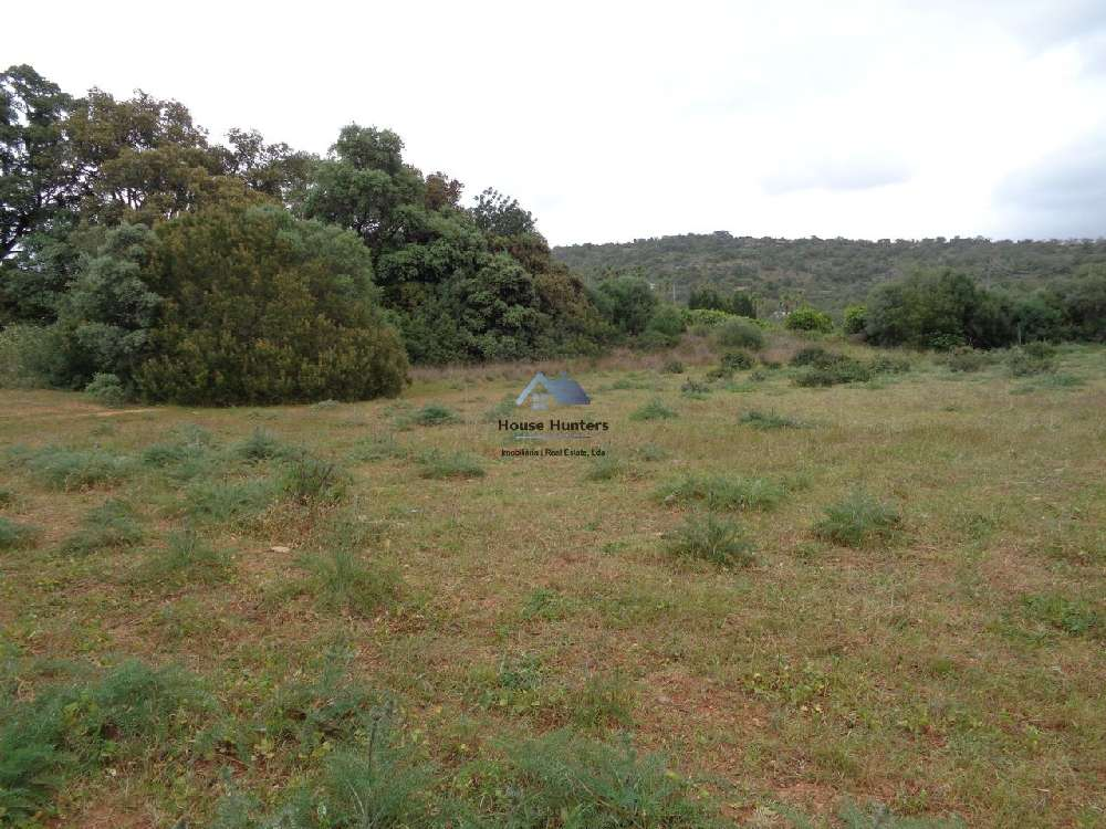Albufeira Albufeira terrain picture 181255