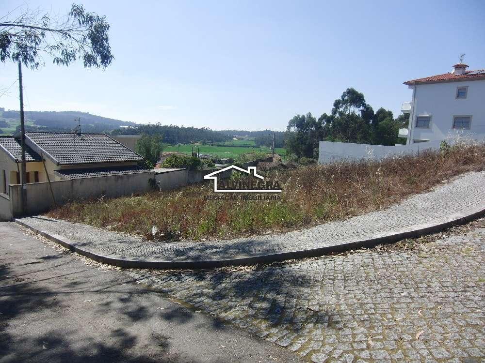 Póvoa de Varzim Póvoa De Varzim terrain picture 174130