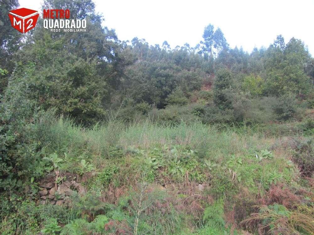 Póvoa de Lanhoso Póvoa De Lanhoso Grundstück Bild 186174