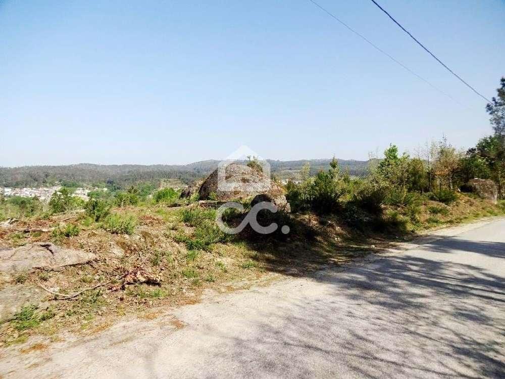 Cabanões de Baixo Viseu terrain picture 170129