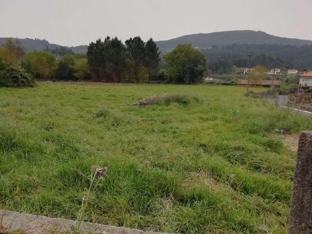 Cornes Vila Nova De Cerveira terrain picture 170113