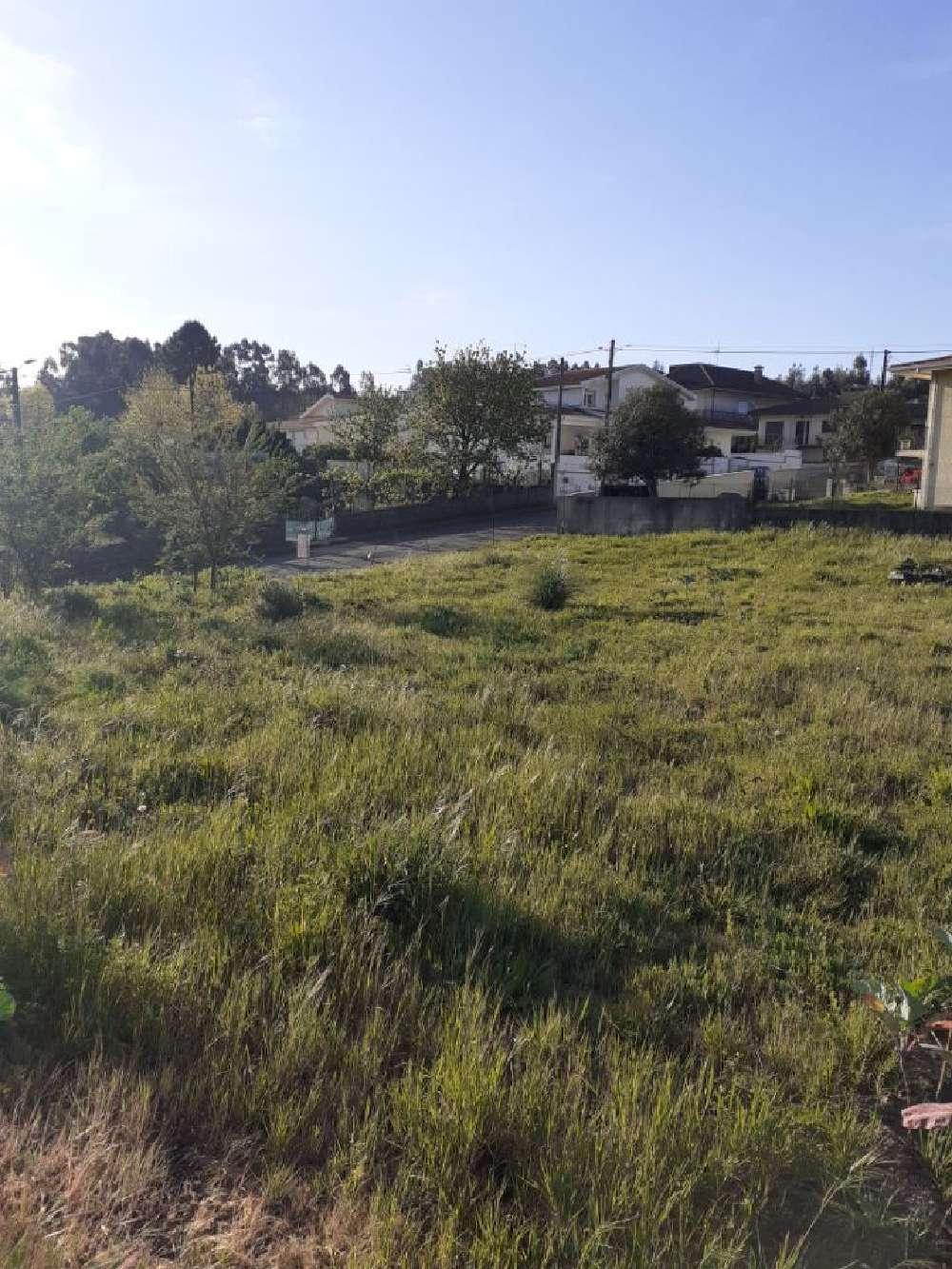 Vilarinho Santo Tirso terrain picture 171187
