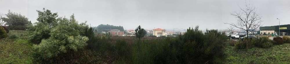 Sabrosa Sabrosa Grundstück Bild 184760