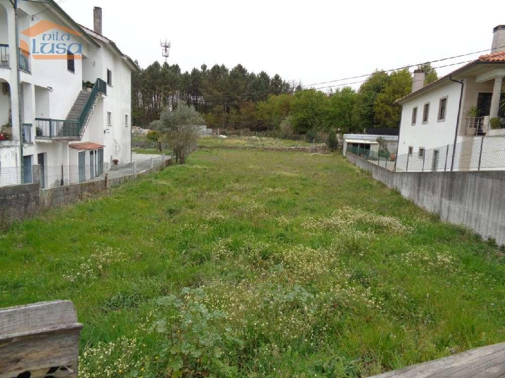Mundão Viseu terrain picture 169046