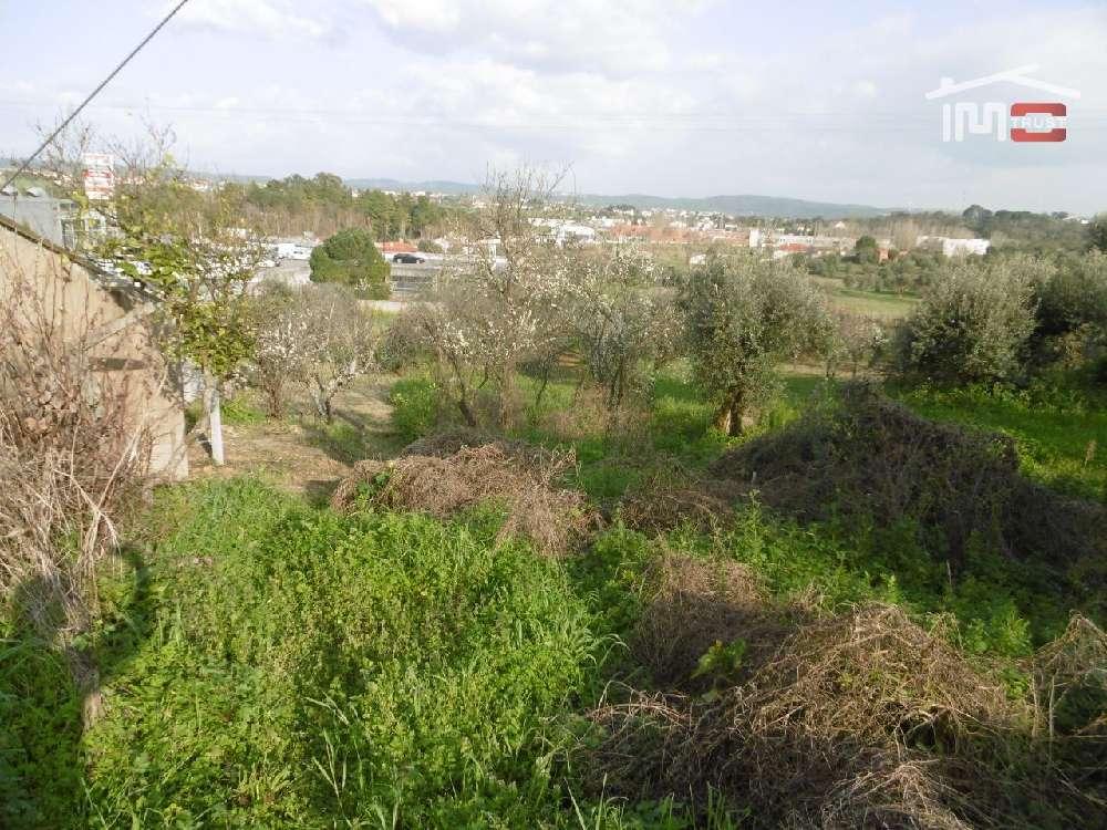 Balancho Tomar Grundstück Bild 172058