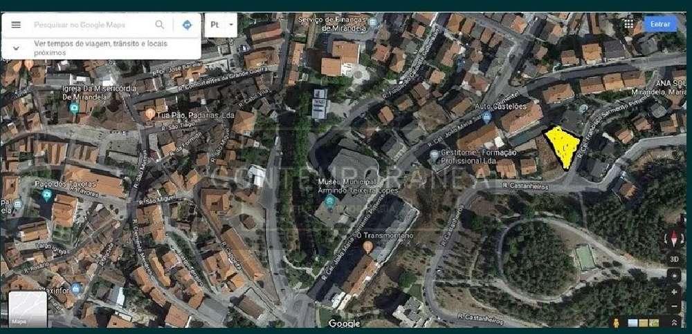 Mirandela Mirandela terrain picture 184999
