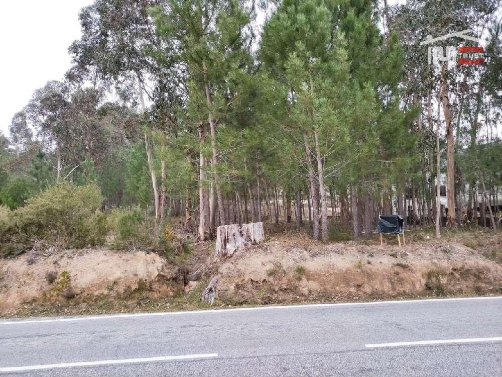 Urqueira Ourém terrain picture 172048