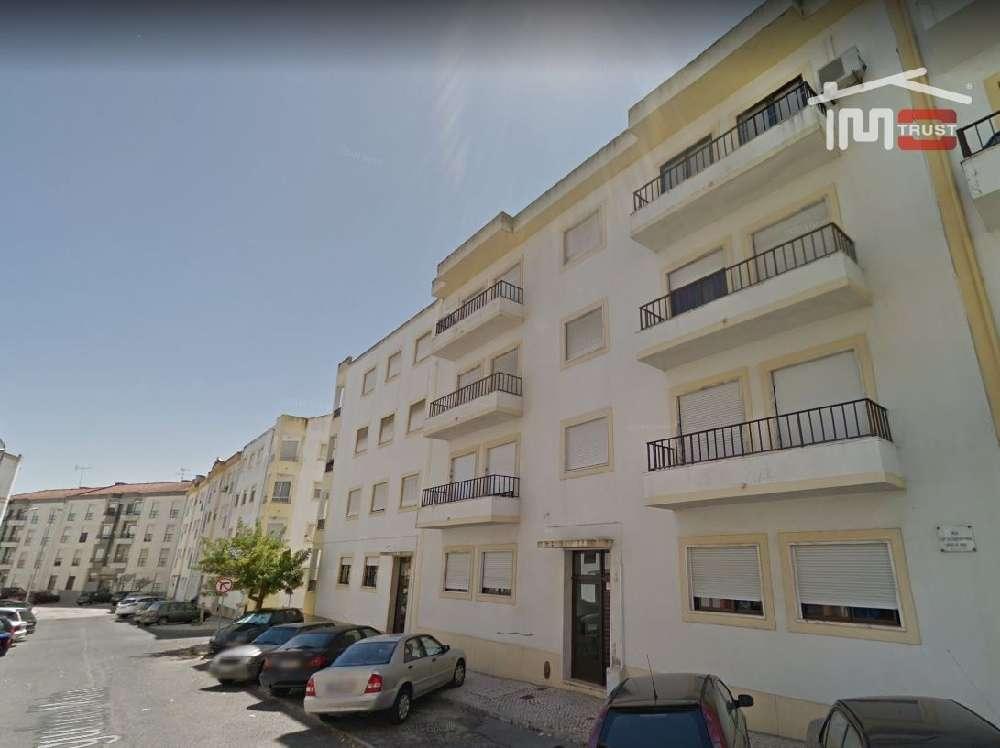 Cartaxo Cartaxo appartement photo 172388