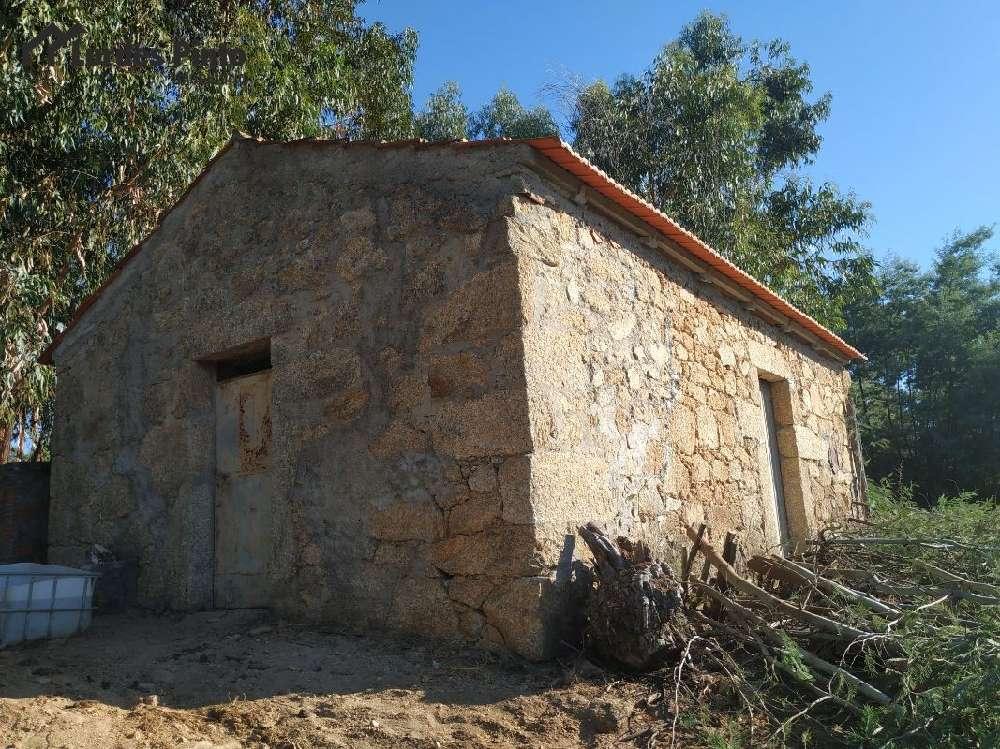 Fundão Fundão hus photo 185868