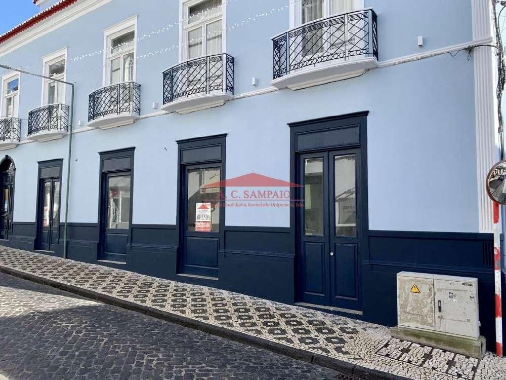 Ponta Delgada Santa Cruz Das Flores commercial picture 173843