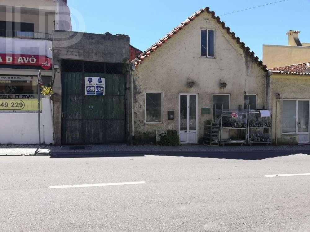 Estarreja Estarreja villa picture 181264