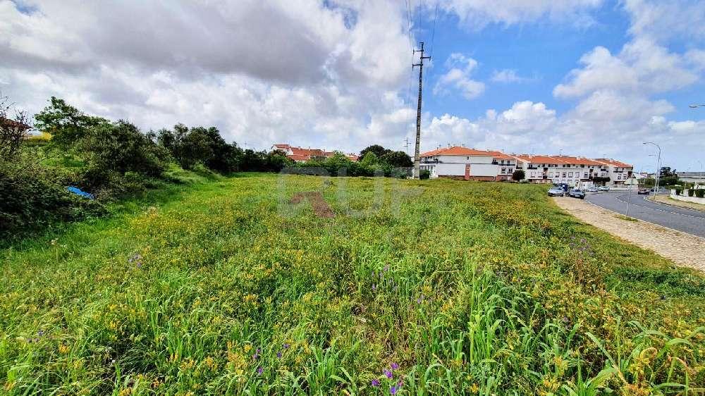 Algueirão Sintra terrain picture 168411