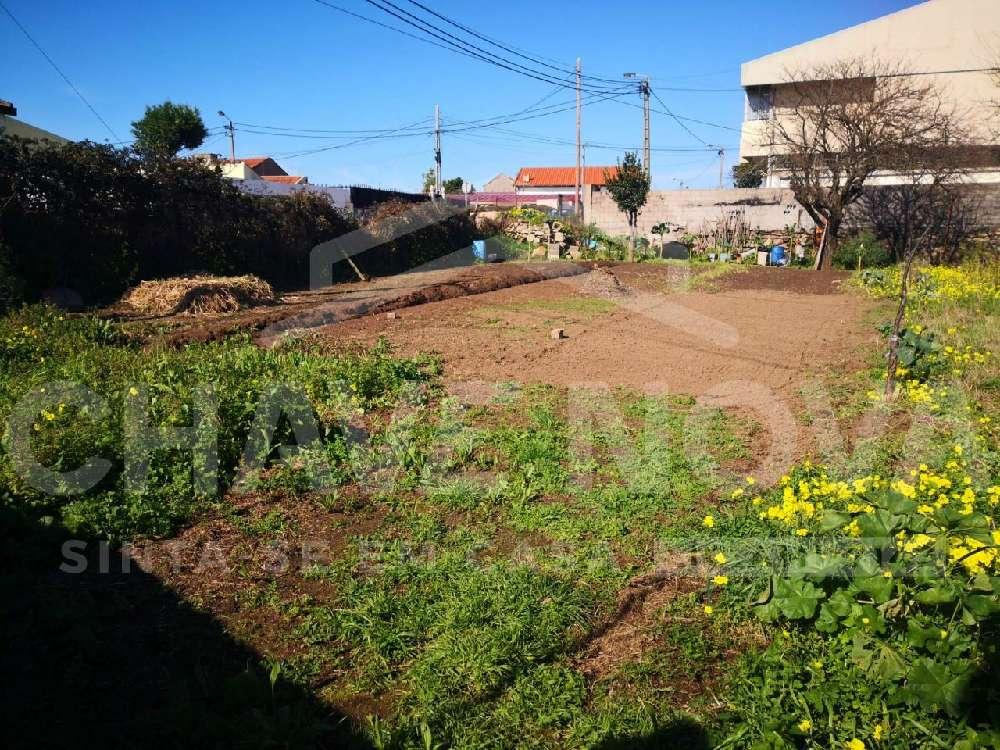 Lavra Matosinhos terrain picture 169731