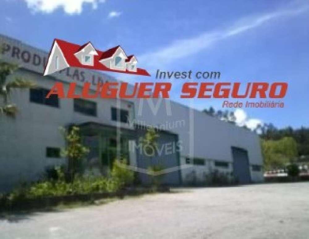 Vouzela Vouzela commercial picture 174057