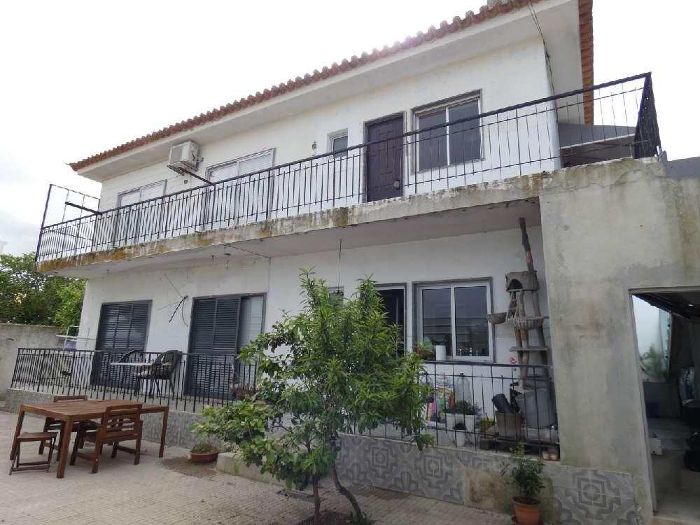Faro Faro villa picture 178728