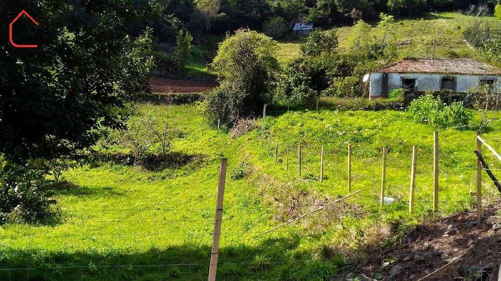 Santa Porto Moniz 土地 照片 #request.properties.id#