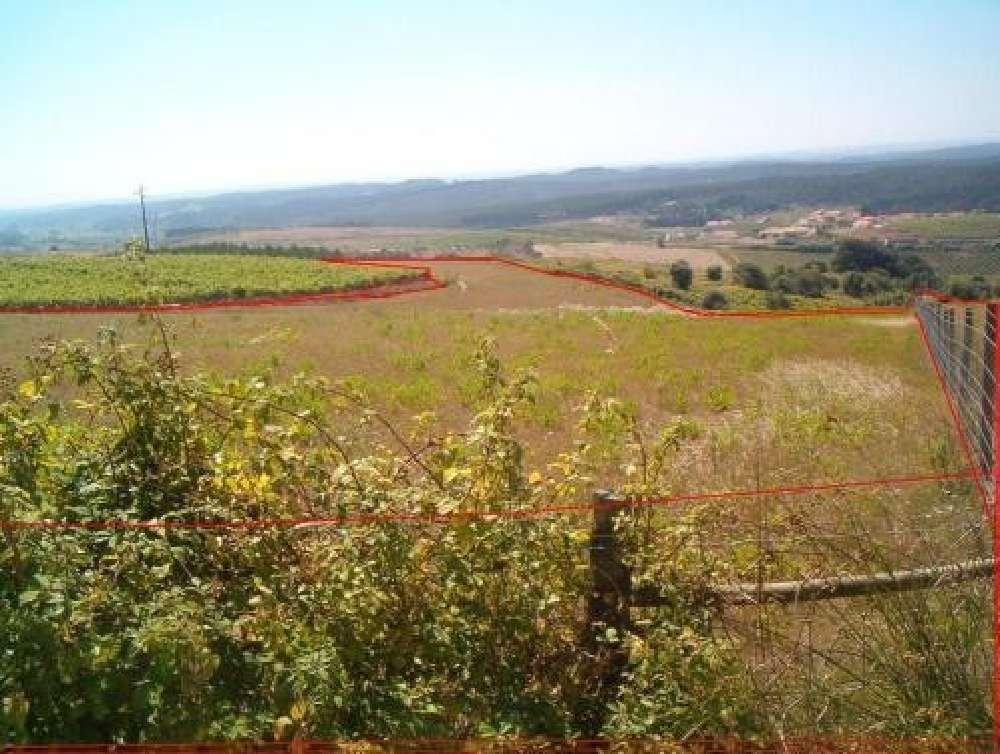Alenquer Alenquer terrain picture 183340